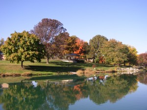 Stephen's Lake Park, Home of Art in the Park.
